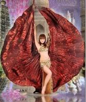 Крылья для танца живота, красные